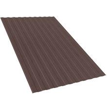 Профнастил лист С20 цвет коричневый
